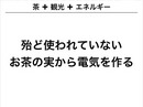 2012_1202yanagi_3.jpg